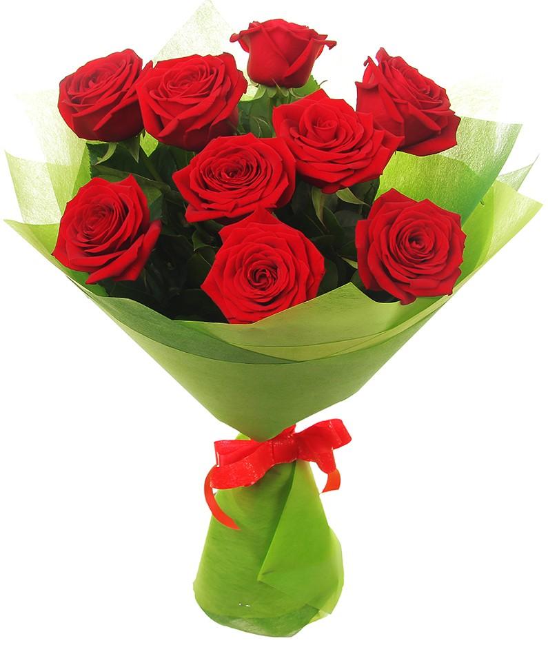 серия розы фото пять штук далеко